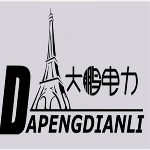 Handan city dapeng power equipment manufacturing Co., Ltd.,